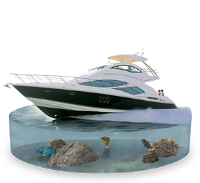 Motor Yacht/Cruisers