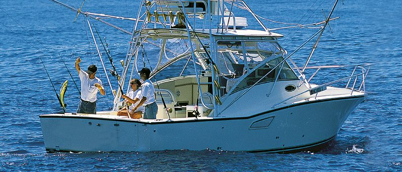 Large sport fishing boats gallery for Sport fishing boats